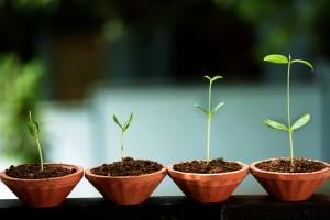 Berg op Coaching Duurzame inzetbaarheid